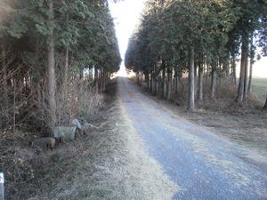 Kasayama_doudaira_20111204_267