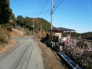 Kasayama_doudaira_20111204_436