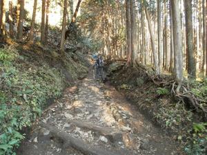 Tanzawa_2011121011_044