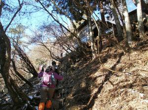 Tanzawa_2011121011_141