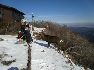 Tanzawa_2011121011_265