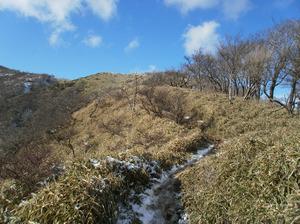Tanzawa_2011121011_363