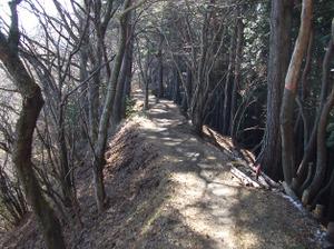 Tanzawa2_2011121011_288