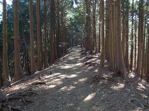 Tanzawa2_2011121011_316