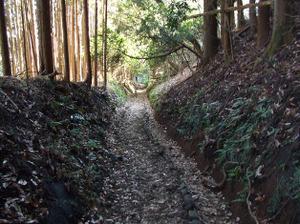 Tanzawa2_2011121011_332