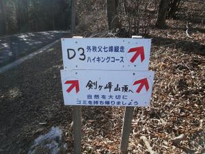 Hikisanzan_bateikeijyuso_20111224_4