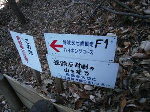 Hikisanzan_bateikeijyuso_2011122_44