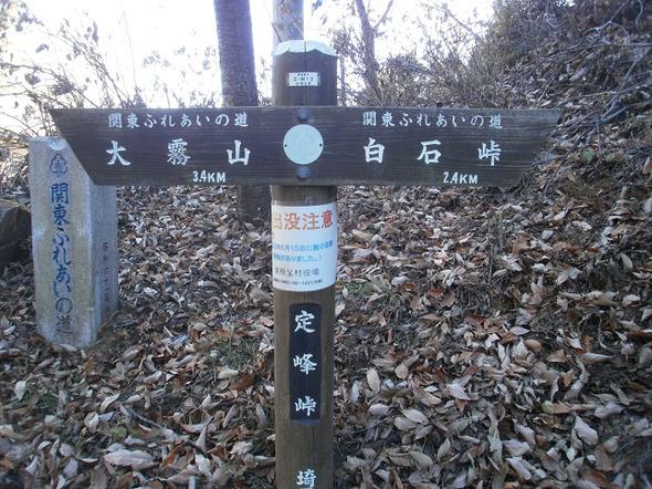 Hikisanzan_bateikeijyuso_2011122_46
