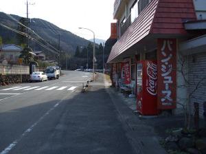 Hikisanzan_bateikeijyuso2_201112_10