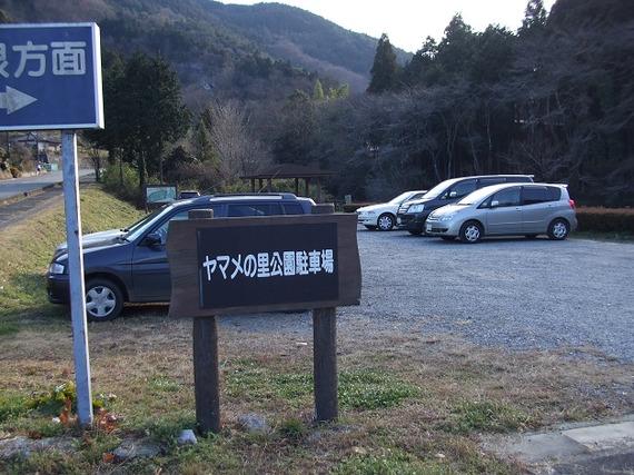 Hikisanzan_bateikeijyuso2_201112_13