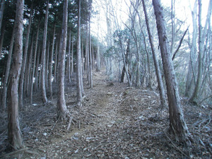 Gozenyama_20111230_105