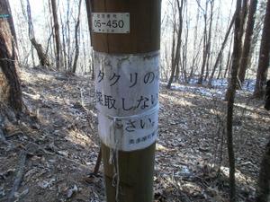 Gozenyama_20111230_299