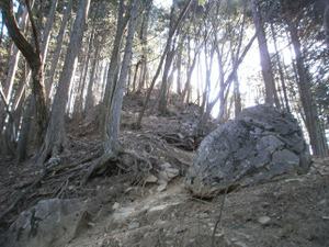 Gozenyama_20111230_390