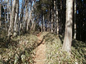 Gozenyama_20111230_426