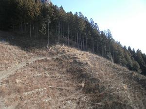 Futagoyama_20120108_411