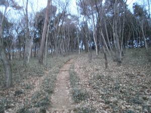 Hiwada_yugate_20120115_013
