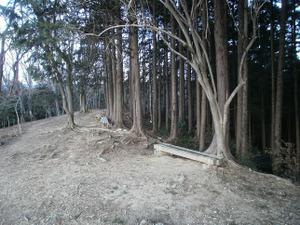 Hiwada_yugate_20120115_115