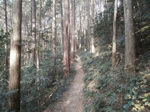 Hiwada_yugate_20120115_197