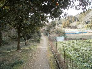Hiwada_yugate_20120115_218
