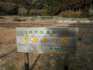 Hiwada_yugate_20120115_223