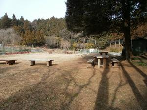 Hiwada_yugate_20120115_228