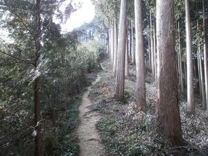 Hiwada_yugate_20120115_251