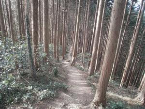 Hiwada_yugate_20120115_256