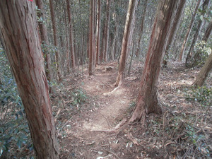 Hiwada_yugate_20120115_276