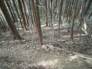 Hiwada_yugate_20120115_280