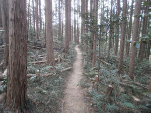 Hiwada_yugate_20120115_287