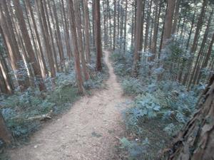 Hiwada_yugate_20120115_292