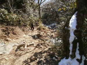 Tsukubasan_20120204_299