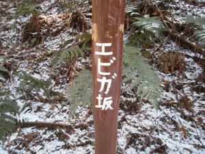 Ogamiyamakaoburi_20120218_192
