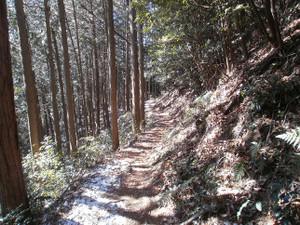 Ogamiyamakaoburi_20120218_277