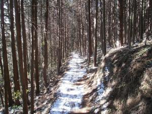 Ogamiyamakaoburi_20120218_381
