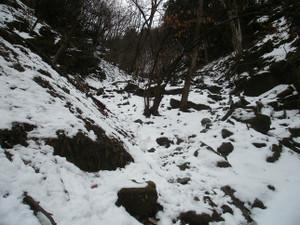 Futagoyama_yokoze_20120303_047