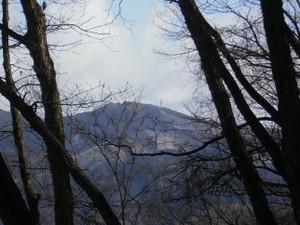 Futagoyama_yokoze_20120303_130