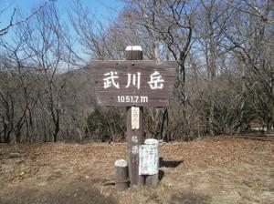 Takekawadake_jyuso_20120327_262