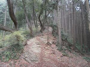 Hiwadayama_20120421_005_2