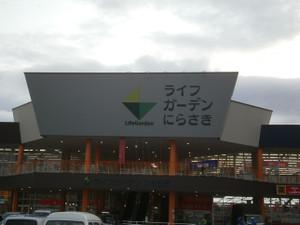 Kayagatake_kanagatake_20120501_393