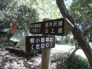 Takasaki_shizen_20120505_226