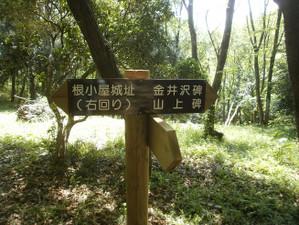 Takasaki_shizen_20120505_304_2