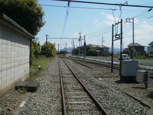 Takasaki_shizen_20120505_374