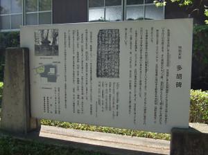 Takasaki_shizen2_20120505_021