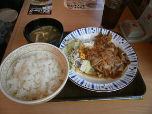 Takasaki_shizen_20120505_417