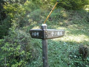 Nenokongen_izugatake_20120513_028