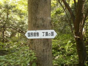 Uramyougi_20120519_085
