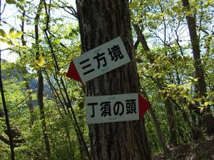 Uramyougi2_20120519_100