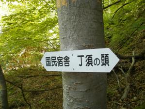 Uramyougi_20120519_167