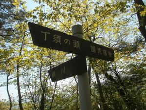 Uramyougi_20120519_214